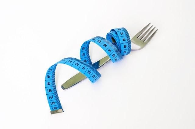 高野豆腐 レジスタントプロテイン ダイエット